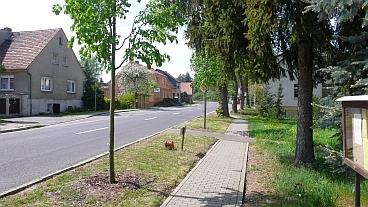 lausitz_260409_026
